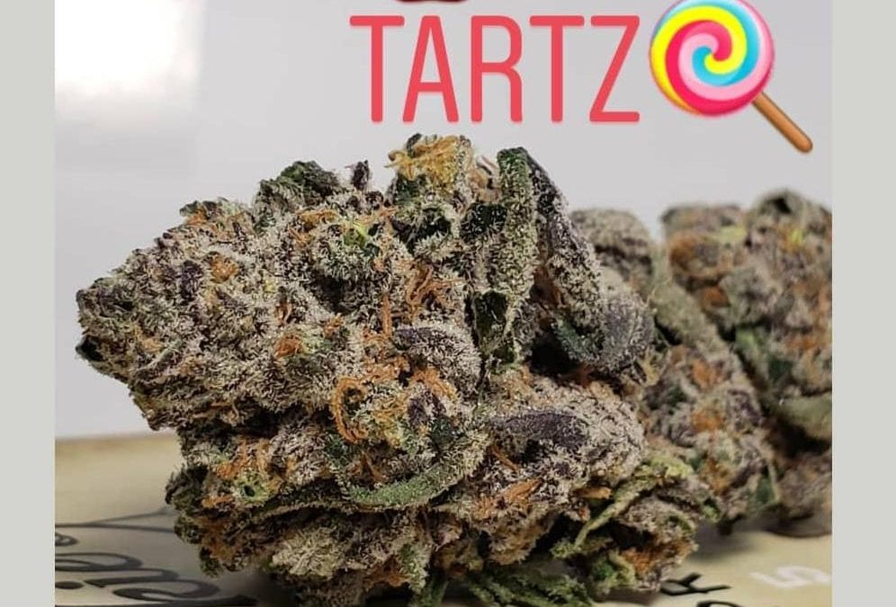 Summer Strain: Apple Tartz